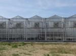 農業版シリコンバレー バイエル社が1200万ドルをかけて研究用の大型植物工場を建設