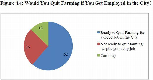 インド農家の60%が都市部への移住希望。新たな栽培方法による都市型農業ビジネスにもチャンス