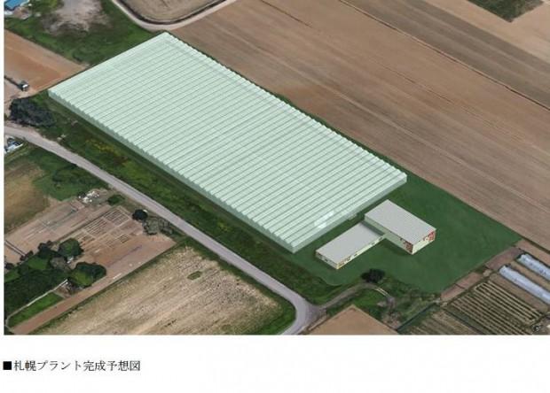 JFEエンジ、太陽光利用型植物工場を札幌市内に拡張。高糖度トマトの生産拡大へ