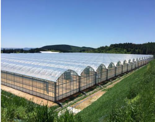 JNCの農業システム技術の事業化を促進する大分・玖珠事業所が竣工