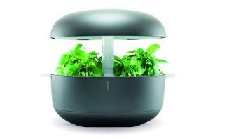 フィンランド生まれの家庭用植物工場・「Plantui Smart Garden」を日本で販売開始