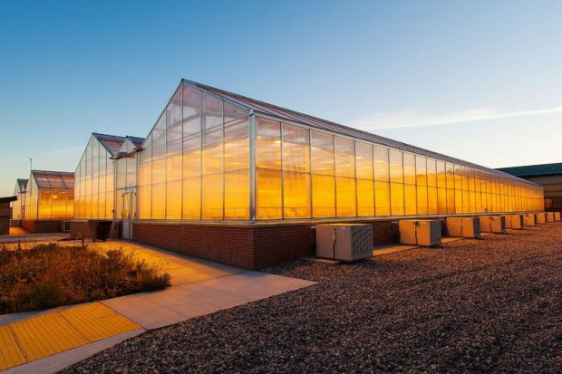 ノース・ダコタ州立大学が約40億円にて植物工場・研究施設を完成