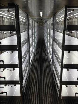 ハートフルコープよしの、6連結式のコンテナ型植物工場を導入。障害者雇用・農福連携へ