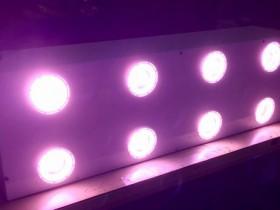 日本アドバンストアグリ、薬用植物に特化した植物工場向けの3波長型ワイドバンドLEDを開発