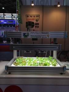 植物工場の上海出展_アグリウェーブ