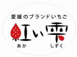 愛媛県による新品種「紅い雫」を開発、高級イチゴとして11月下旬より出荷予定