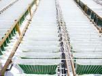 米国の藻類企業がGlobal Energy Awardを受賞