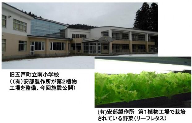 安部製作所、青森の廃校利用した人工光型植物工場が稼働。みちのく銀行などが金融支援