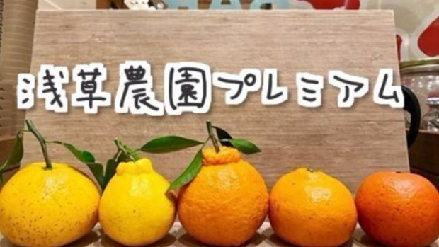 『DMM × 浅草農園』新たな食とITの架け橋!DMMオンラインサロンで「浅草農園プレミアム」サービスを提供