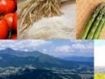 阿蘇の2大産業「農業」と「観光」を連携、レストランバスで創造的復興へ