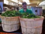 米国におけるファーストフード・チェーンの生き残り戦略。植物工場による自社生産・娯楽型農業による地域活性化