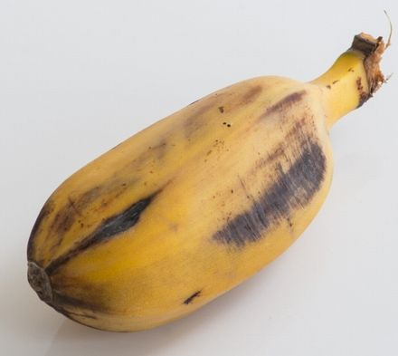 オイシックス、機能性表示食品・高栄養野菜のネット販売コーナー新設。植物工場野菜の販売も