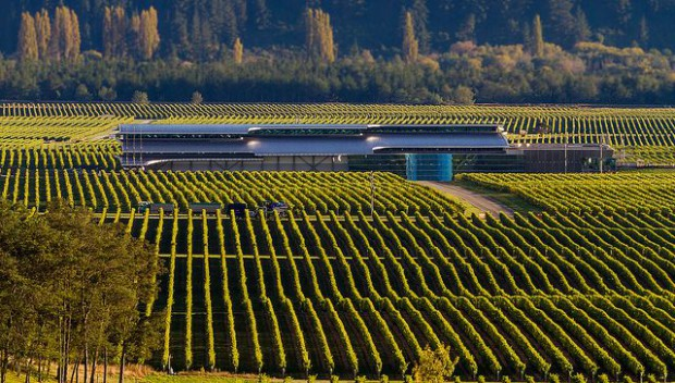 米国の農業ビジネス、トランプ発言への影響。既に数千万円に設備投資を行う経営者も