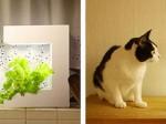 オリンピア照明、インテリアに優れた家庭用植物工場を販売