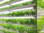 シーシーエス、全ての植物工場事業から撤退を発表
