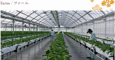 高知の2支援事業所、グローバルな食品安全国際規格を障がい者施設で国内初取得