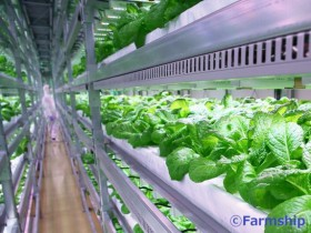 植物工場ベンチャーのファームシップ「ものづくり・商業・サービス革新補助金」に採択