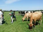 フォンテラジャパンが「ニュージーランド・北海道酪農協力プロジェクト」の中間報告を発表