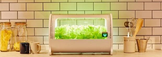 小型植物工場・IoT水耕栽培機「foop」、公式ショップにて「Apple Pay」購入に対応