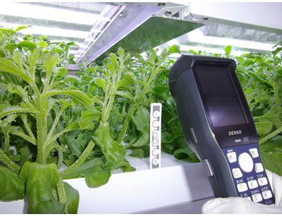 富士通、食・農クラウド「Akisai」植物工場向け生産管理ソリューションを強化