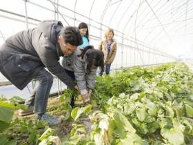 福井県、農家民宿体験を情報発信するホームページを開設