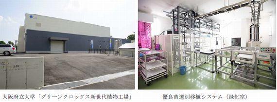 植物工場の「優良苗選別自動化システム」を府立大と共同開発