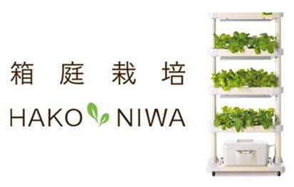エスキュービズム、植物工場・水耕栽培システム「箱庭栽培プロ」を学校の食育授業向けに拡販