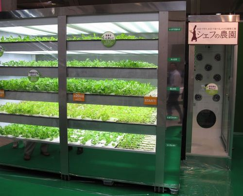 各社、店舗併設型の小型植物工場を提案。サブウェイでも直営店を運営。電通や丸紅も飲食店向けを販売
