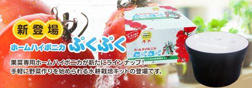 水耕栽培メーカーの協和、家庭用水耕栽培キットの新商品を販売