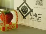 人工光型植物工場によるイチゴ商品の販売へ いちごカンパニー