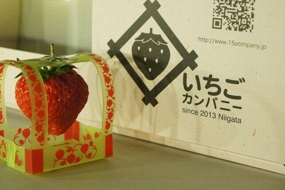 LED植物工場による大粒イチゴ