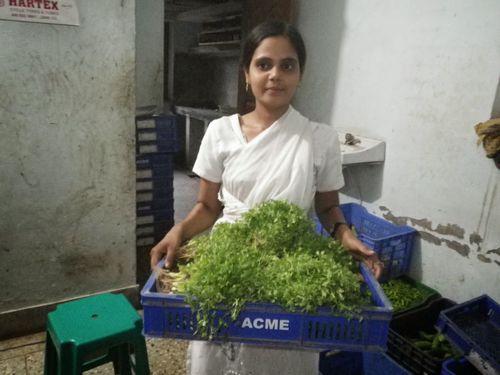 インドの農業ビジネス改革の最前線、生産・流通改善を通じたソーシャル事業