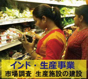 学生インターンの募集 インド植物工場イチゴ施設