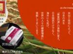 東洋ライス「最も高額な米」でギネス世界記録認定された商品などの販売拡大を開始