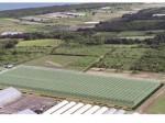 JFEエンジニアリング、新潟にて2haの太陽光利用型植物工場プラントを一括受注