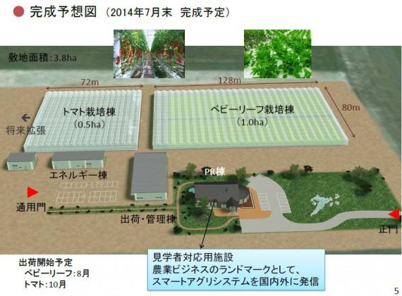 天然ガスを活用したトリジェネシステムにて、トマトやベビーリーフの通年栽培を北海道でも目指す(JFEエンジニアリング)