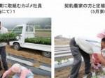 カゴメ、宮城県にて加工用トマトの大規模露地栽培へ