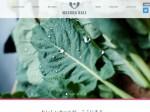 増田採種場がマスダのケールのブランドページを開設