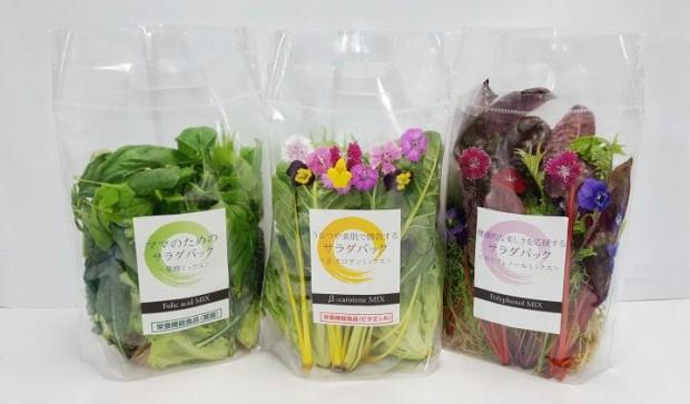 キーストーンテクノロジー、植物工場による機能性野菜サラダパックの生産開発に成功