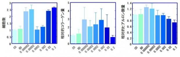 山菜コゴミ・エキス、真皮のコラーゲン・ヒアルロン酸産生と表皮細胞の増殖促進を確認