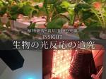 福井県の若狭東高が文科省のSPHに認定。植物工場などテクノアグリ人材の育成へ
