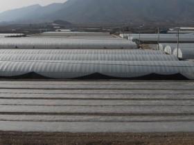 韓国LGグループによる植物工場・アグリビジネス参入。生産者による反対・LG製品のボイコット運動まで発展