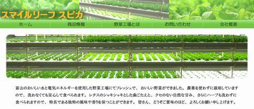 スマイルリーフスピカ、植物工場・水耕栽培野菜をファミマへ提供。商品材料へ採用