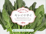 富士通の植物工場、一般品種ホウレンソウの低カリウム化・生サラダ商品として販売開始
