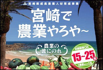 マンパワーグループ、宮崎県で農業の活性化を支援。就農希望者への研修・農業体験