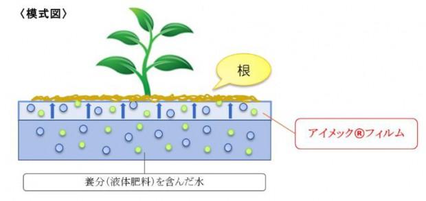 肥料販売のデンカ、メビオール社のフィルム栽培システムの販売開始