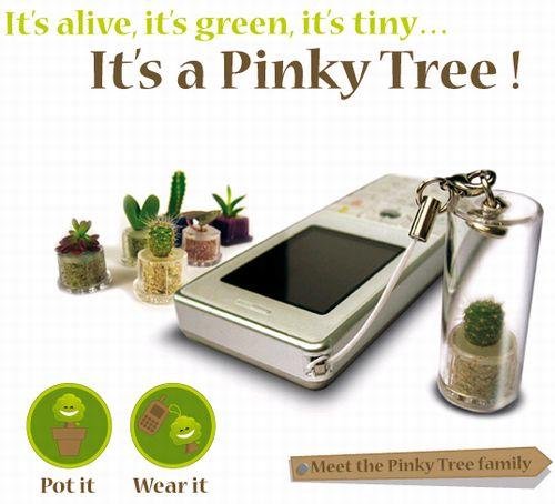 可愛い・癒し系のマイクロ植物。携帯ストラップやPCデスクの飾りとして。もちろんエコにも貢献するPinky Tree