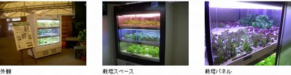 環境試験器メーカー:エスペックが植物工場事業の本格展開を発表。店舗内に設置可能な小型商品の販売も行う予定