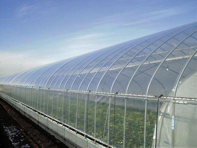温室ハウスの大規模化・近代化が進む中国市場において、現地の機能フィルム工場が竣工(三菱樹脂)