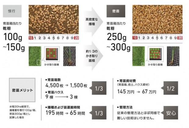 ヤンマー、高密度に播種した苗を正確に植え付ける「YR-D密苗仕様」4機種を発売